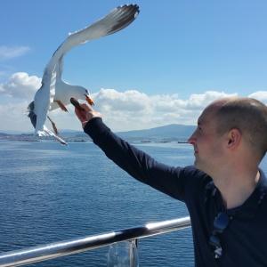 O Grove Catamaran Experience